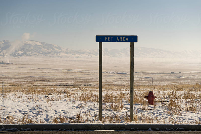Winter Roadtrip by Terry Schmidbauer for Stocksy United