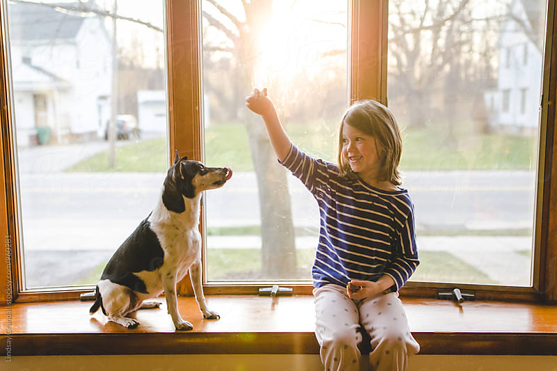 Child holding a treat up for a dog by Lindsay Crandall for Stocksy United