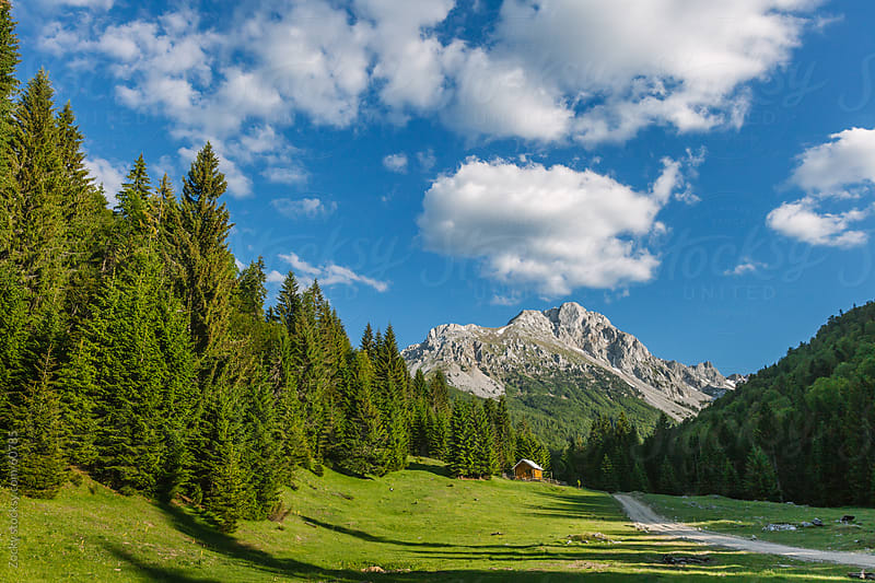 Mountain trail in the montenegrin highlands by Zocky for Stocksy United