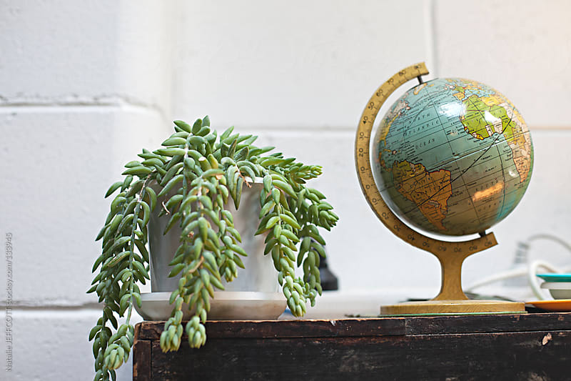 close up of globe and succulent in a designer's studio by Natalie JEFFCOTT for Stocksy United