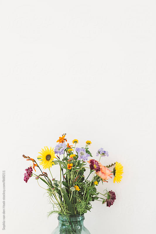 Flower bouquet by Sophia van den Hoek for Stocksy United