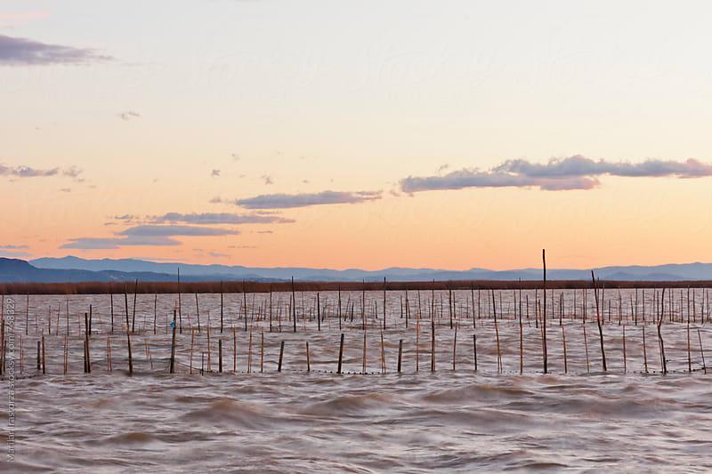 The Albufera Lagoon at sunset by Marilar Irastorza for Stocksy United