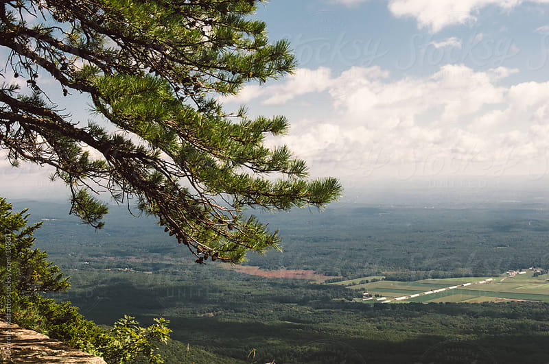 View of Hudson Valley from Catskill Mountaiins by Deirdre Malfatto for Stocksy United