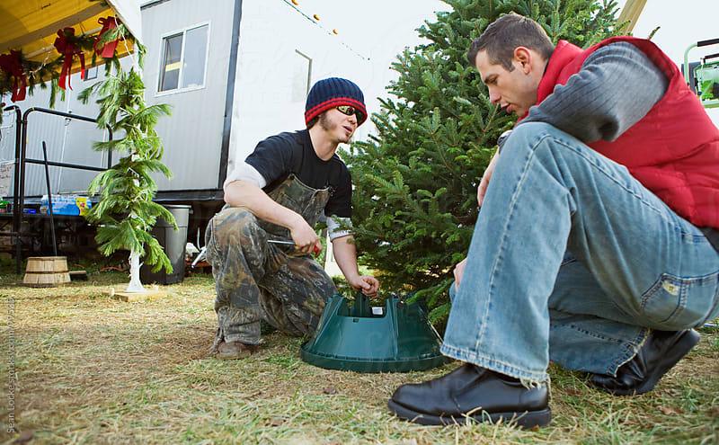Tree Lot: Employee Helps Shopper with Christmas Tree by Sean Locke for Stocksy United