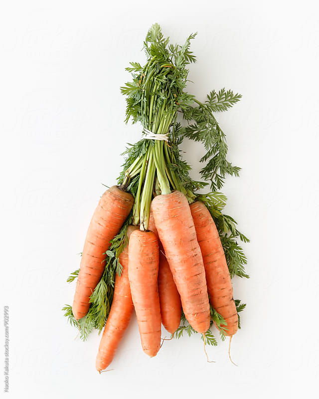 one bunch of fresh carrots with leaves on white background by Naoko Kakuta for Stocksy United