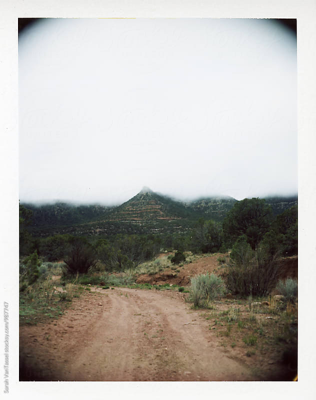 New Mexico 2015 by Sarah VanTassel for Stocksy United