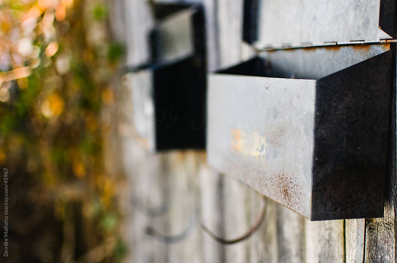 Two open, empty metal mailboxes on a fence by Deirdre Malfatto for Stocksy United