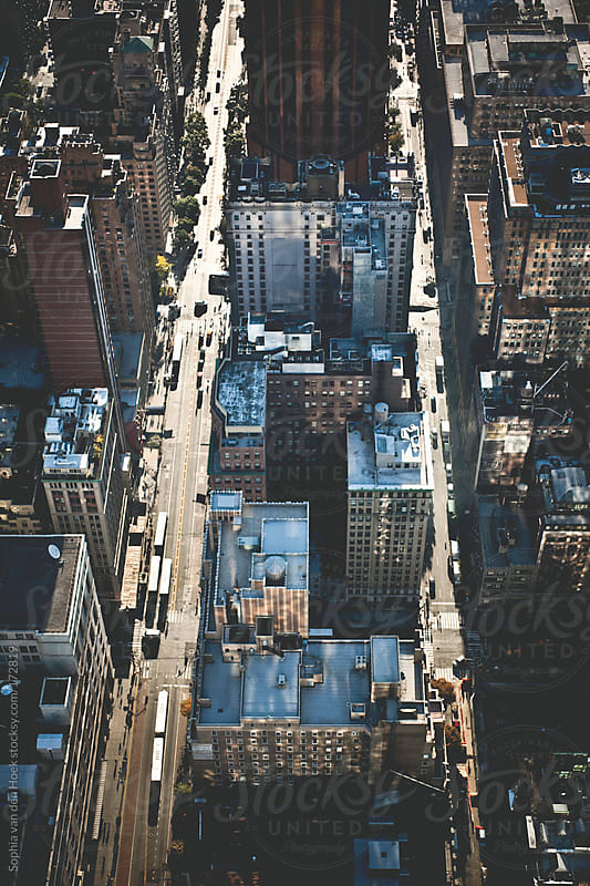 New York from the Empire State Building by Sophia van den Hoek for Stocksy United