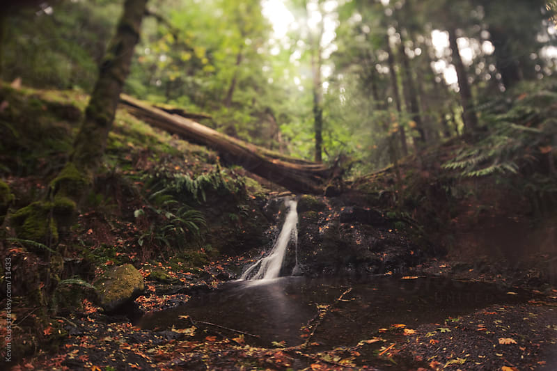 Rustic Falls by Kevin Russ for Stocksy United