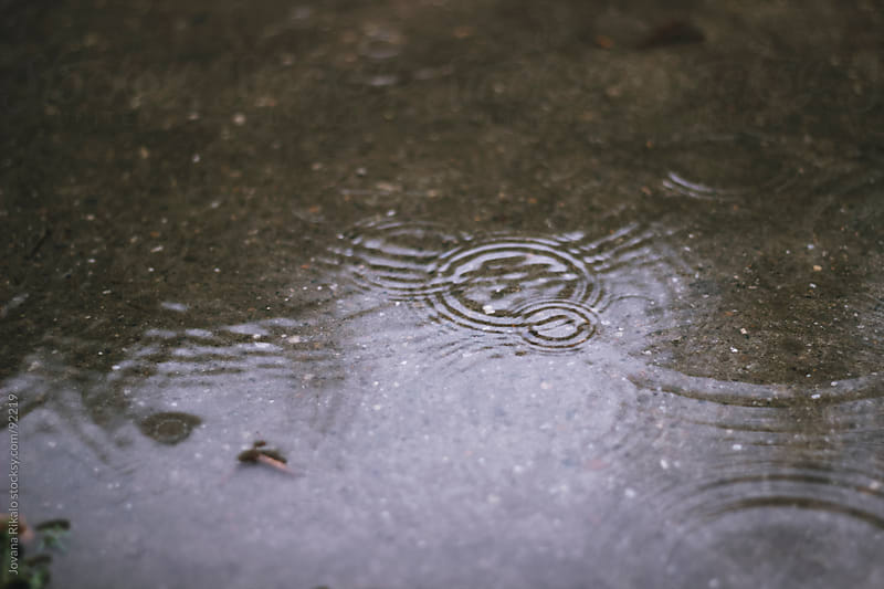 Raindrops in a puddle by Jovana Rikalo for Stocksy United
