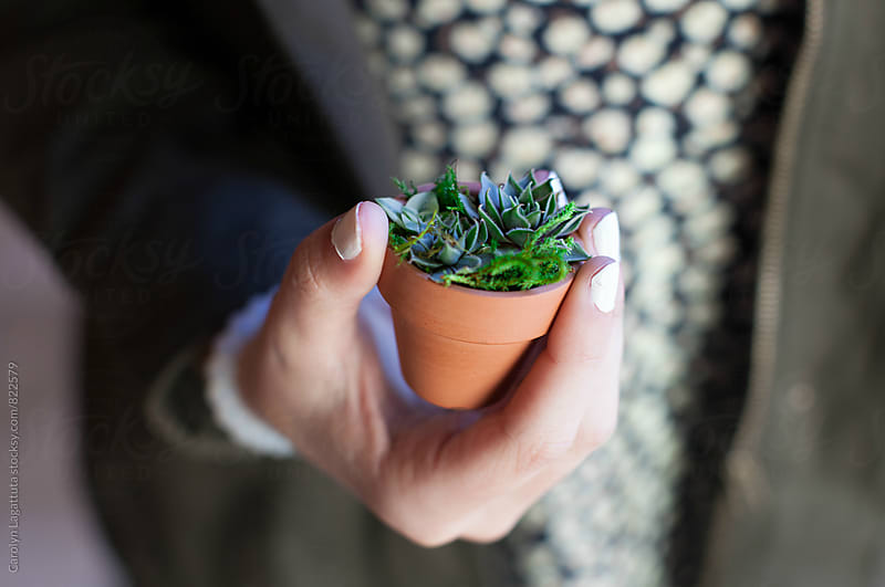 Girl holding a mini succulent by Carolyn Lagattuta for Stocksy United