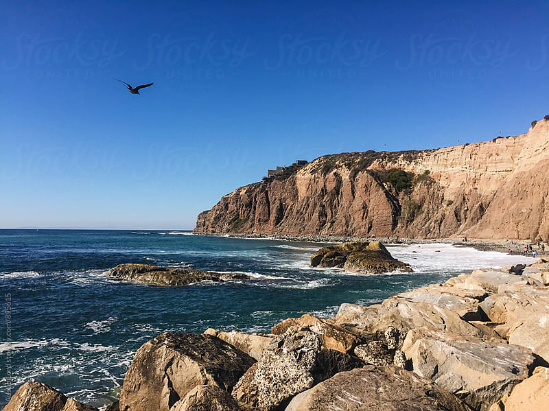 A Bird Flying Over a Rocky Beach  by Austin Lord for Stocksy United
