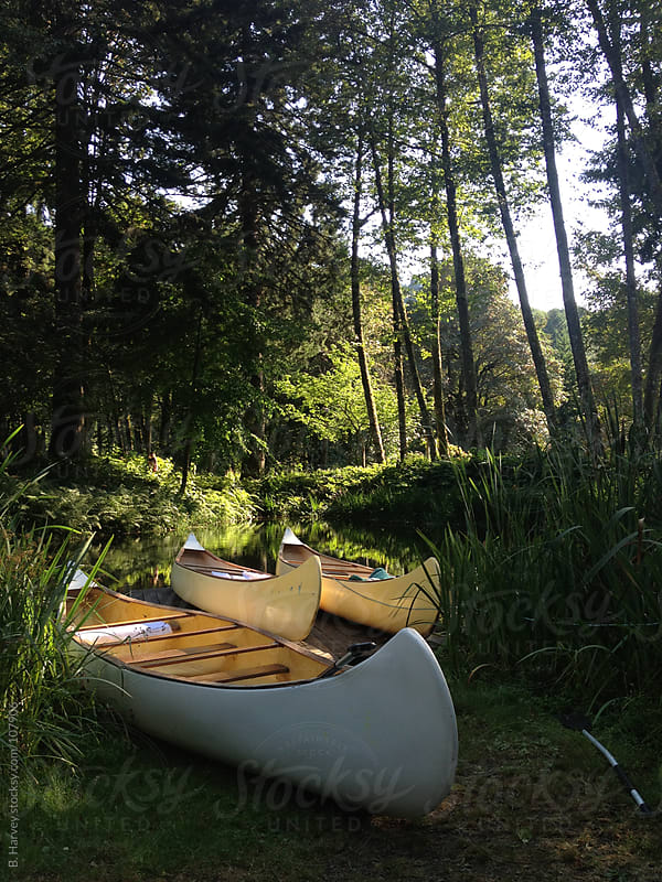 White canoes with soft light surrounded by trees by B. Harvey for Stocksy United