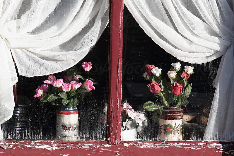 plastic roses in the window by Marcel for Stocksy United