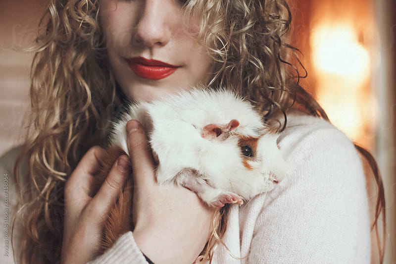 Cute guinea pig  in girl's arms by Jovana Rikalo for Stocksy United