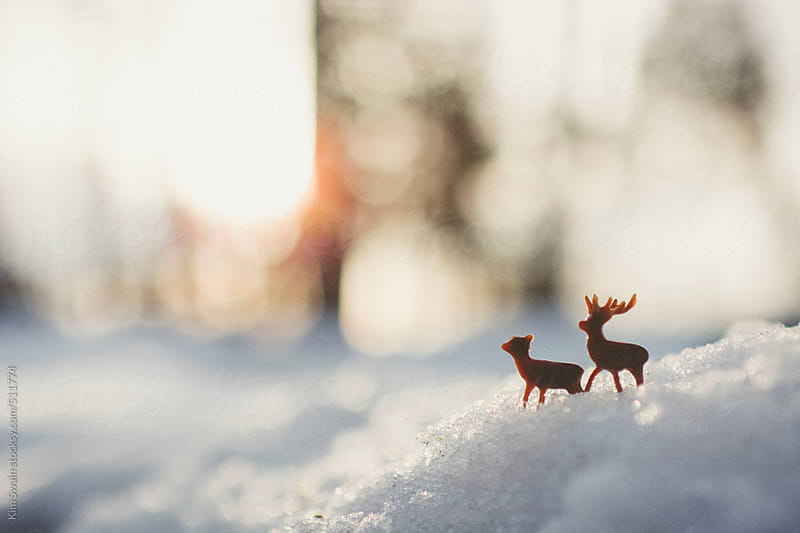 Majestic Deer In Winter by Kim Swain for Stocksy United