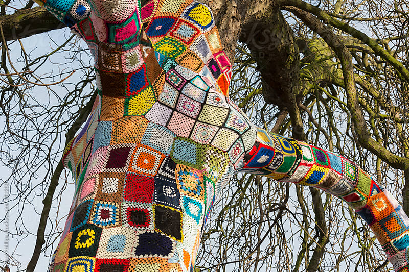 Trunk and branches of a Yarn bombed tree. 1,500 crocheted  squares  by Paul Phillips for Stocksy United