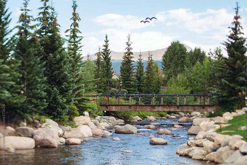 Blue River Breckenridge Colorado in summer by Angela Lumsden for Stocksy United