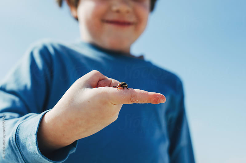 A Boy and a Bug by Ali Deck for Stocksy United