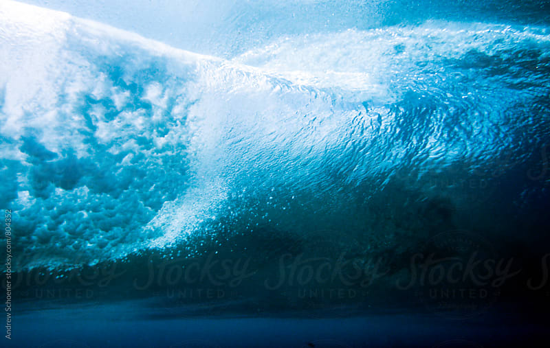 underwater 2 by Andrew Schoener for Stocksy United