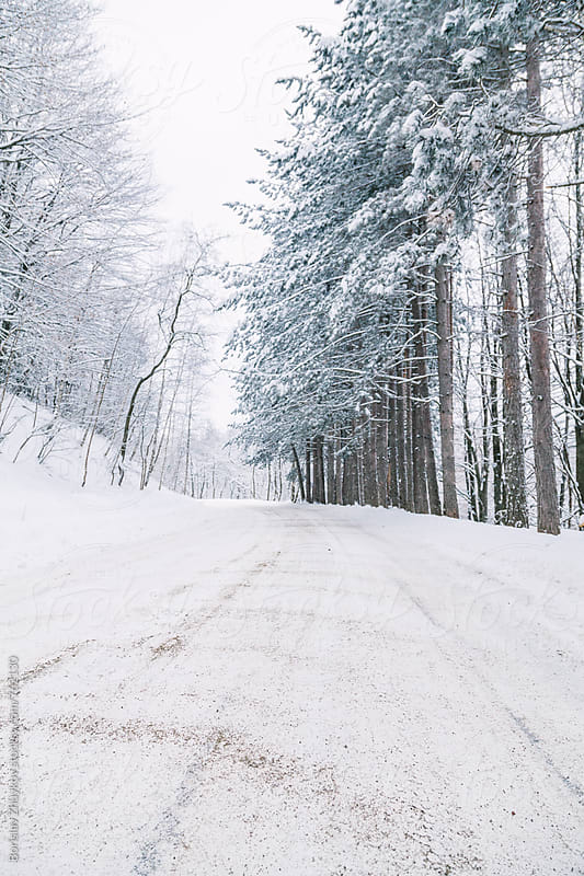 Snowy road in snow forest by Borislav Zhuykov for Stocksy United