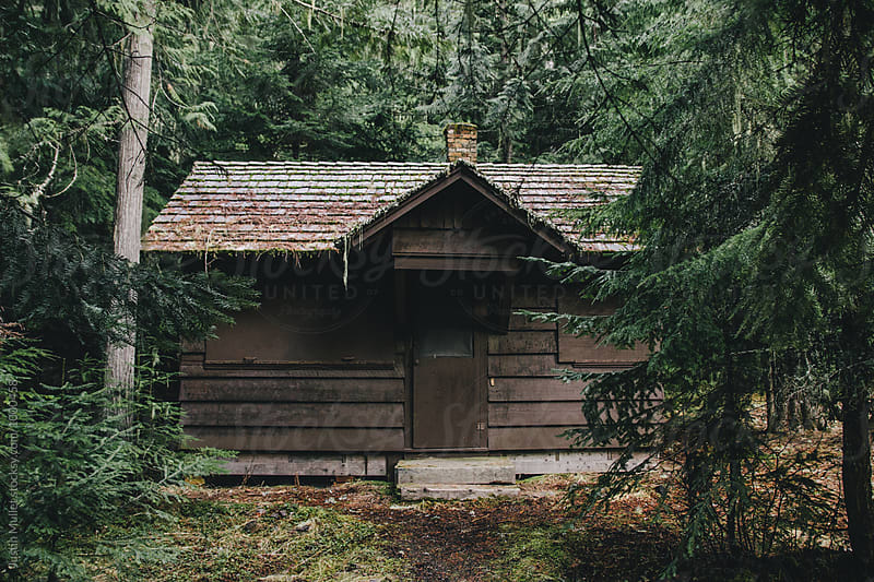 Brown cabin in the forest by Justin Mullet for Stocksy United