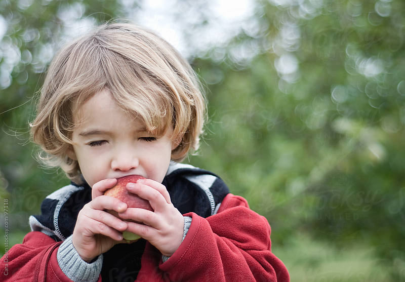Young boy closes his eyes as he takes a giant bite of a freshly picked apple by Cara Dolan for Stocksy United