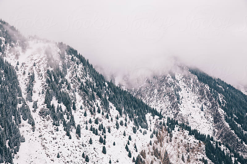 Beautiful landscape of snowy mountains covered with white clouds by Andrey Pavlov for Stocksy United