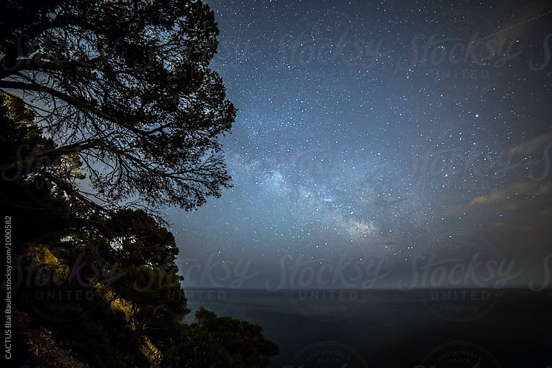 Milky Way over the sea by CACTUS Blai Baules for Stocksy United