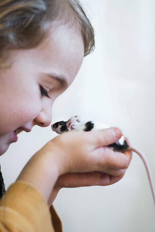 Young boy and his pet mouse are face-to-face by Cara Dolan for Stocksy United