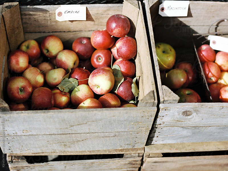 crates of apples by Kirstin Mckee for Stocksy United