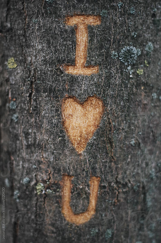 Love sign etched on tree by Jovana Rikalo for Stocksy United