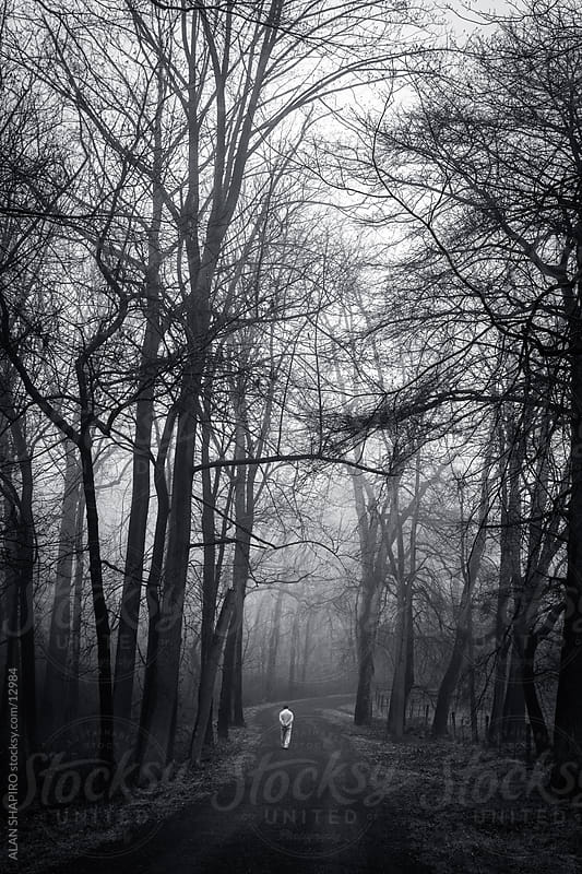 alone in the woods by ALAN SHAPIRO for Stocksy United