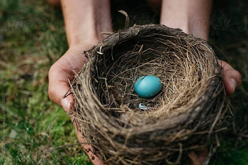 Woman holding a robin's nest with one egg in it by Gabriel (Gabi) Bucataru for Stocksy United