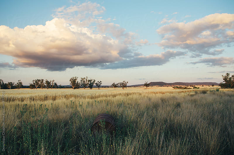 Landscape image of farmland by Dominique Chapman for Stocksy United