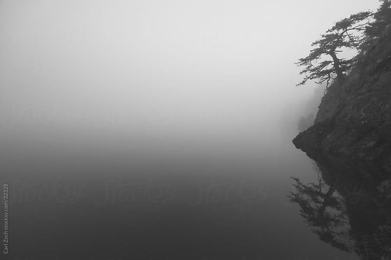 Solitude in the Ocean by Carl Zoch for Stocksy United