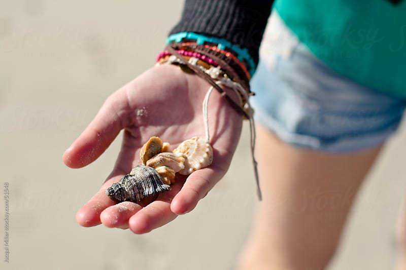 A Girl at the Beach, Wearing Shorts, Holding a Selection of Seashells in Her Hand by Jacqui Miller for Stocksy United
