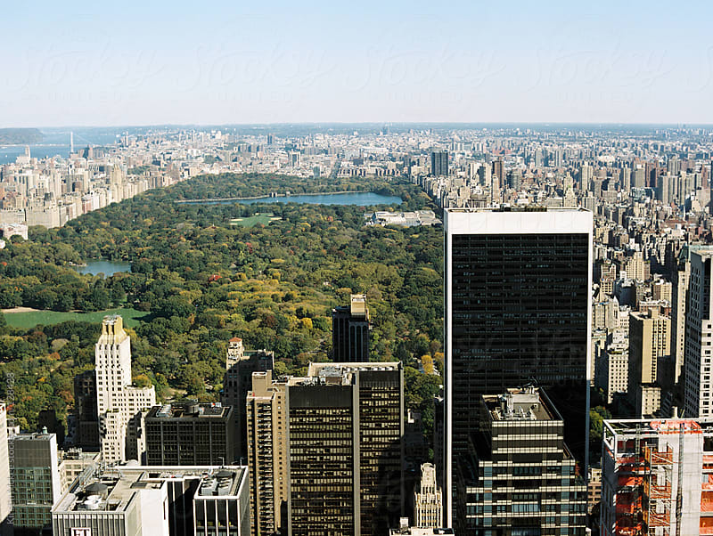 View of Central Park in the autumn by Kirstin Mckee for Stocksy United