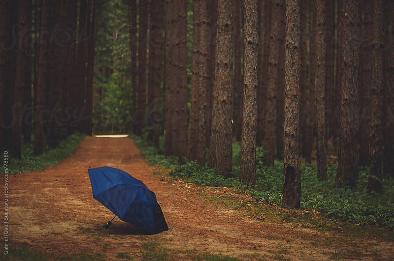 Umbrella in the Woods by Gabriel (Gabi) Bucataru for Stocksy United