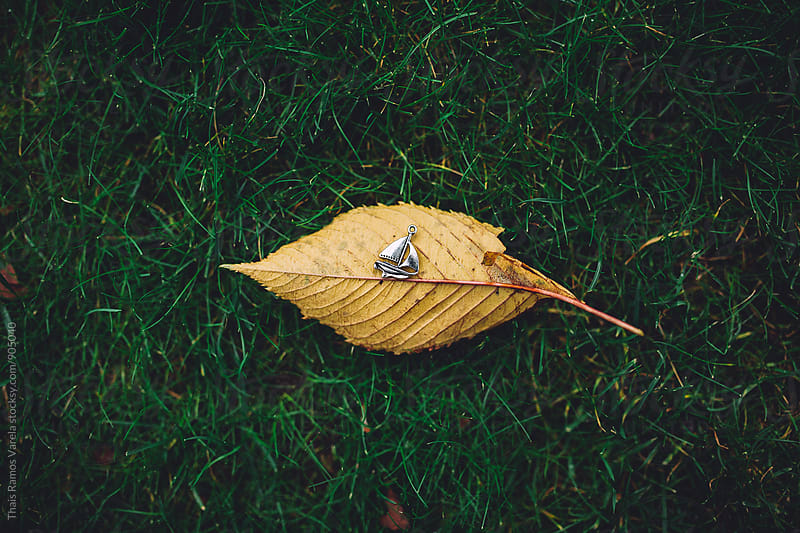 little ship on a dry leaf by Thais Ramos Varela for Stocksy United