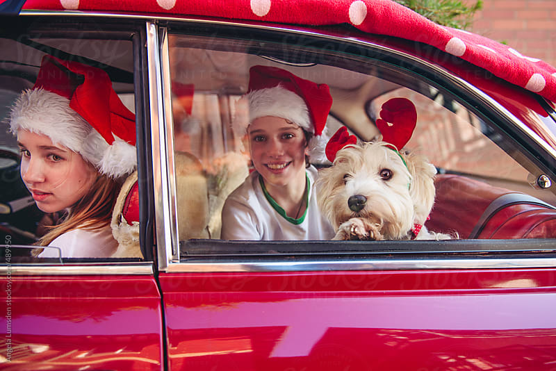 Close up of happy children with a dog in a red car at christmas by Angela Lumsden for Stocksy United