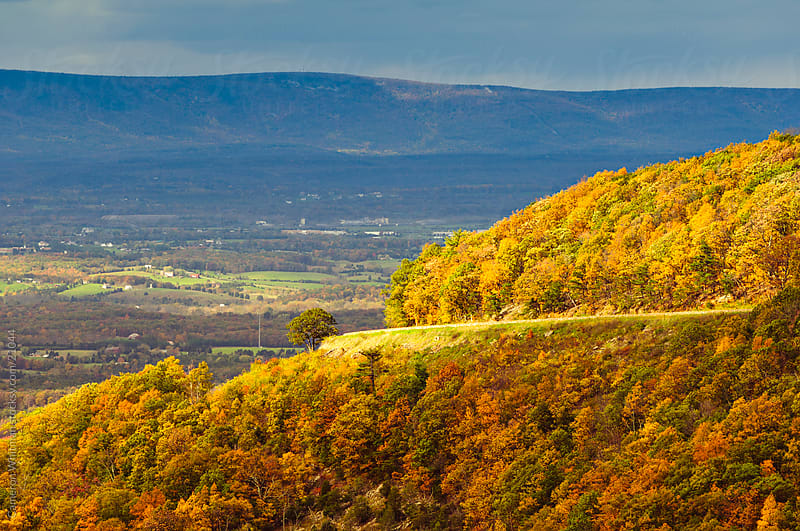 Shenandoah River Valley  by Cameron Whitman for Stocksy United