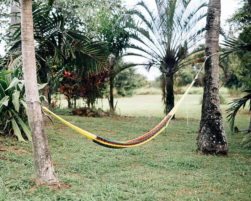 Hanging Hammock by Christian Gideon for Stocksy United