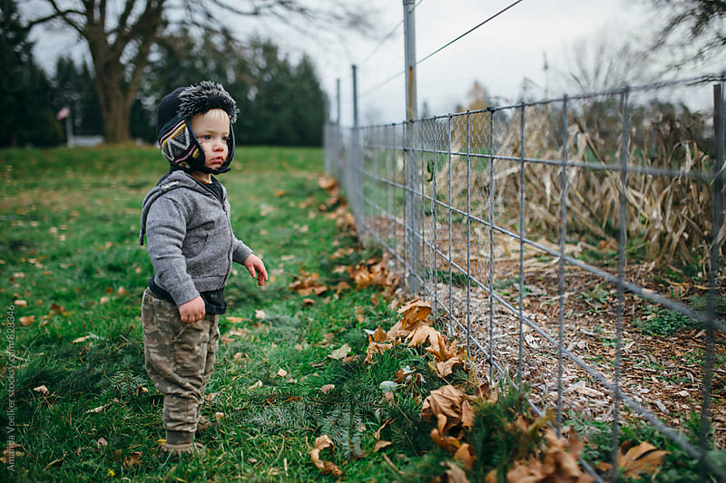 A Toddler boy stands by a garden fence in the late Fall by Amanda Voelker for Stocksy United
