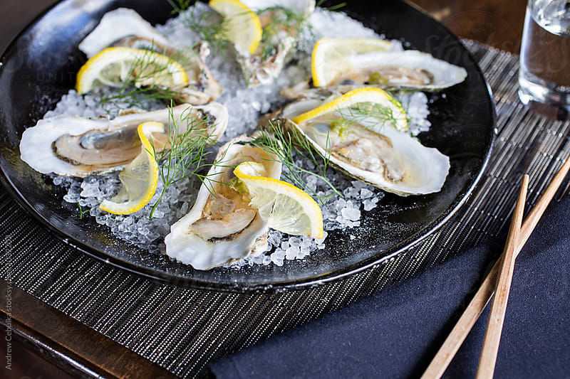 Oysters with citrus on rock salt by Andrew Cebulka for Stocksy United