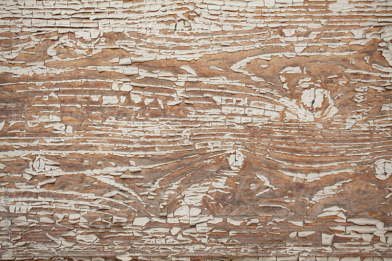 Wooden background.  by Mosuno for Stocksy United
