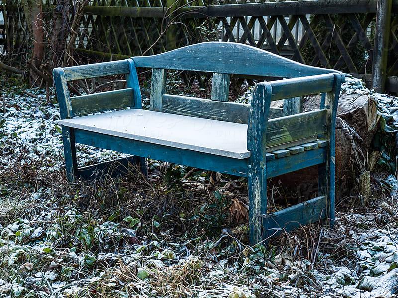 Frostbitten Blue Bench in Garden by Andreas Wonisch for Stocksy United