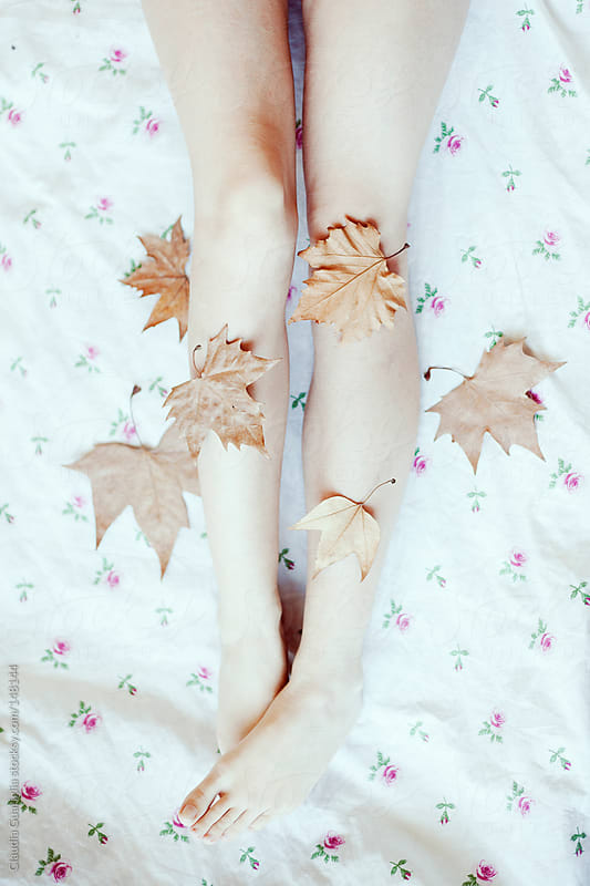 Fallen leaves by Claudia Guariglia for Stocksy United
