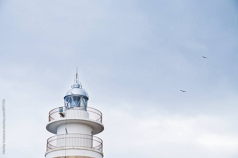 Seagulls flying around a lighthouse by Marilar Irastorza for Stocksy United