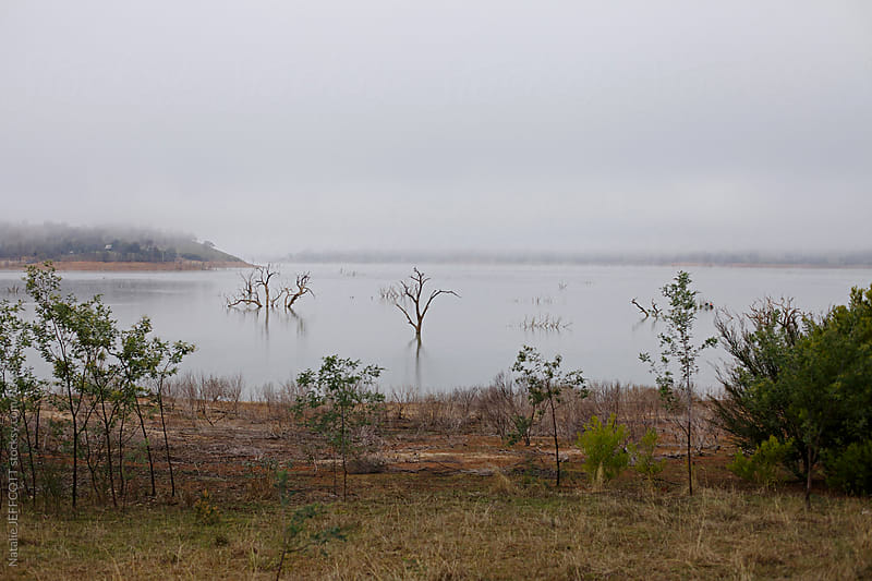 mist on lake eildon by Natalie JEFFCOTT for Stocksy United